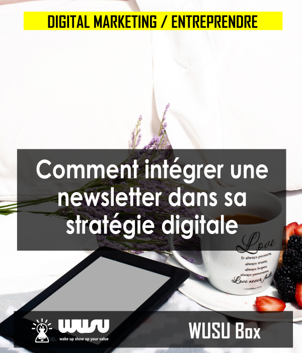 comment-integrer-newsletter-dans-sa-strategie-marketing-digitale-winnie-ndjock-wusu-box-2019