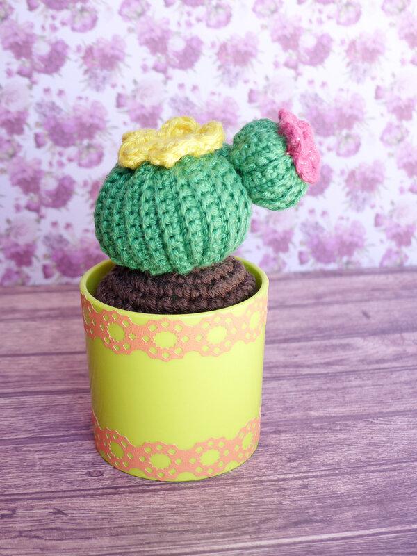 cactus-crochet-petites-plantes-emma-varnam-editions-eyrolles-04