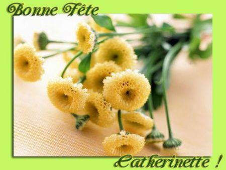 bouquet-jaune-vert-catherinette