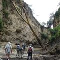 2010-03-01 Lac Naivasha (62)
