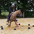 équitation d'extérieur - parcours en terrain varié (191)