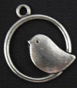 oiseau ds rond