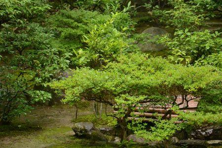 3 juillet Takamatsu Ritsurin 198
