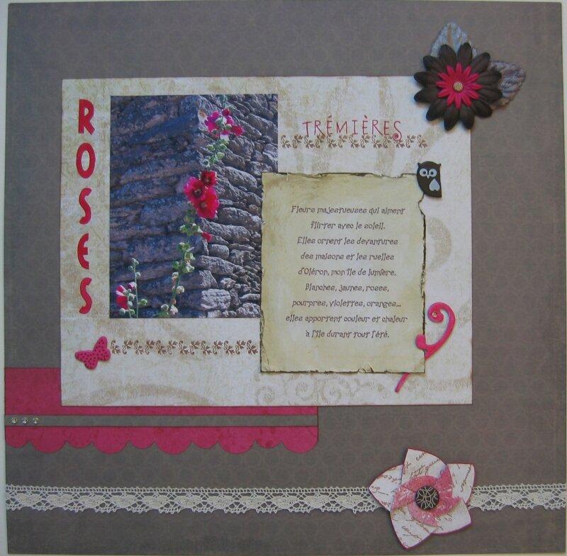 3 - 171009 - Roses Trémières