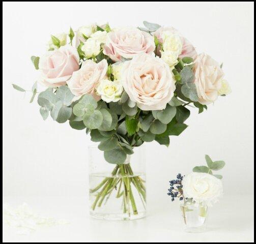 bergamotte bouquet capri