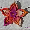 Ma fleur rose et orange