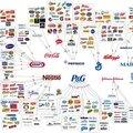 Le choix... parmi 10 grandes entreprises