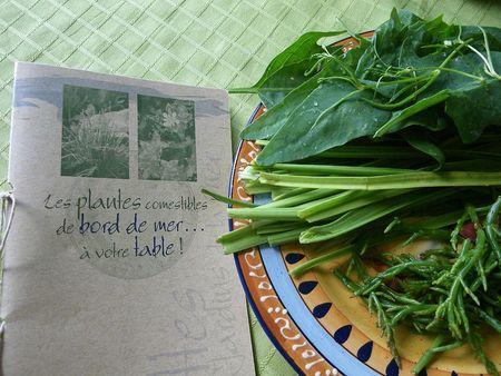 herbes-st-laurent