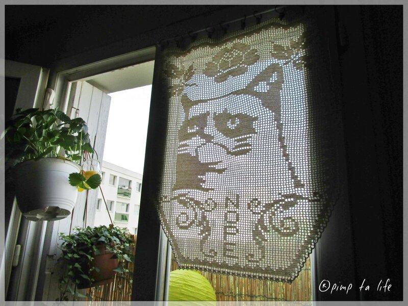 ®pimp ta life grumpy cat rideau (1)