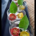 verrines tomates, thon et fromage frais