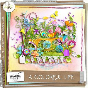 A_colorful_life