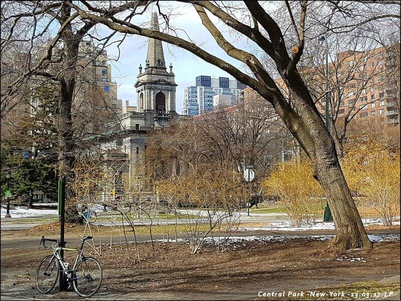 11-NY-Central Park-13