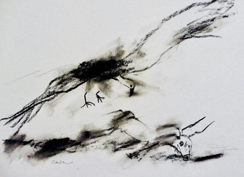 vautour 5