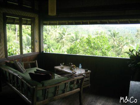 bali-eco-log9