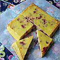 Gâteau a la ricotta & aux framboises