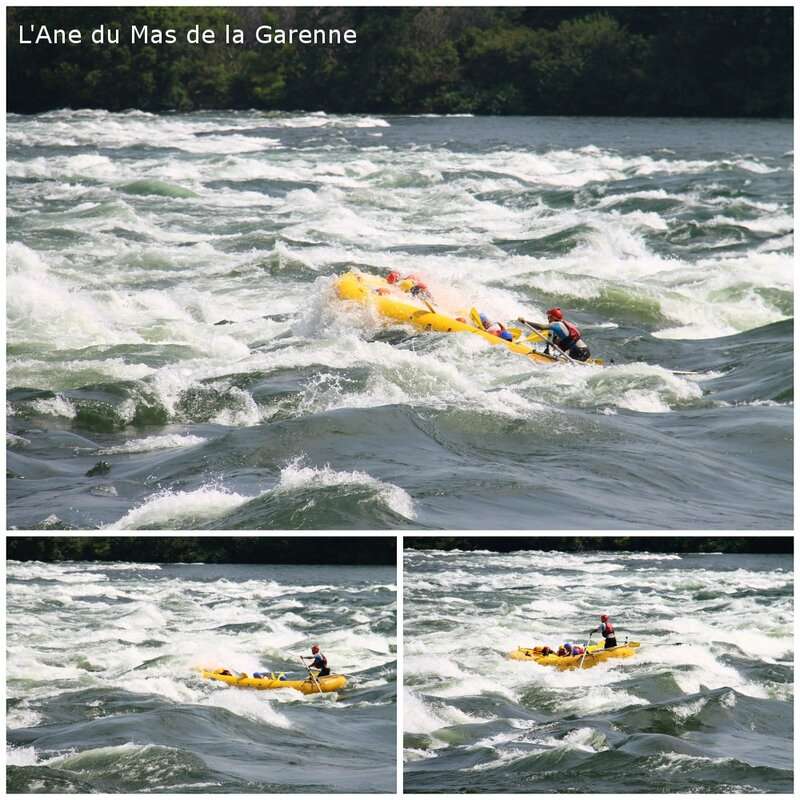 rafting_2014_08_031