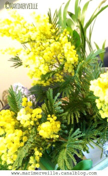 Bouquet de mimosa - Marimerveille