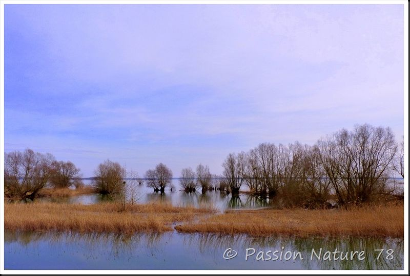 Lac de Der-Chantecoq