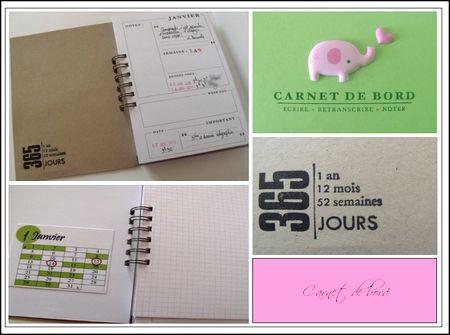carnet_de_bord_2011