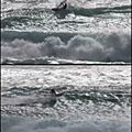 Wind - surf / coup double !...