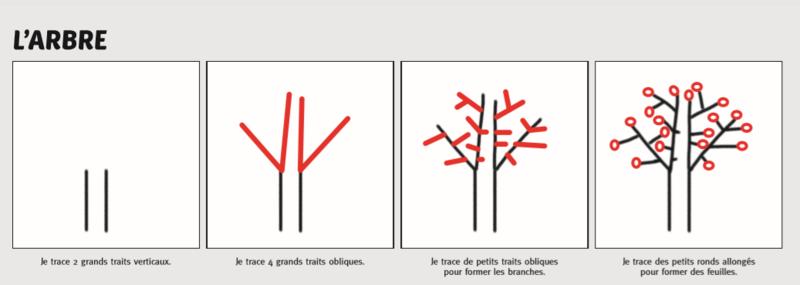 dessin dirigé arbre