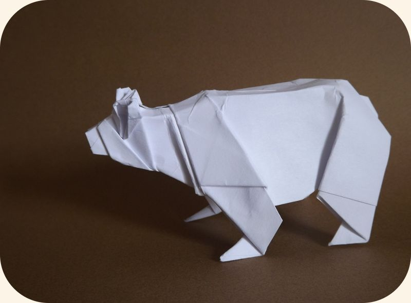 Ours (Origami Zoo)