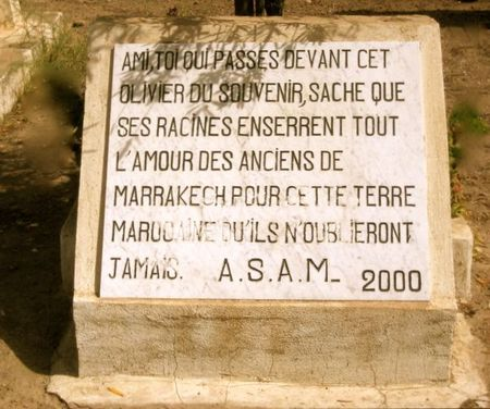 2000ASAM