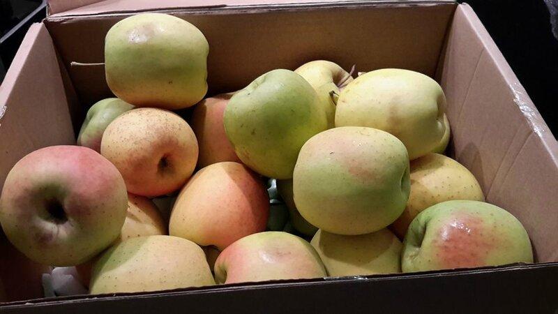 Colis pomme Tentation 09 11 16