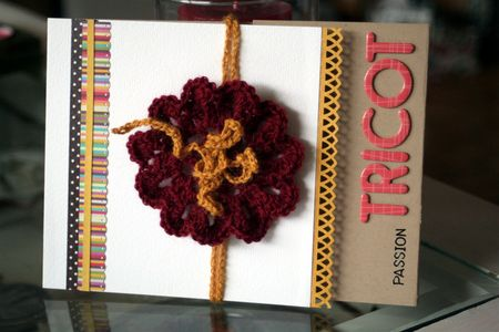 Passion_tricot_01