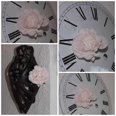 Roses pour Katia (14)