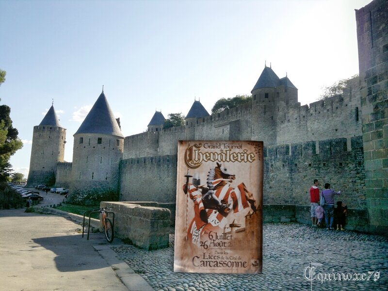 voyagez dans le temps en train du futur Puy du Fou - Carcassone (2)