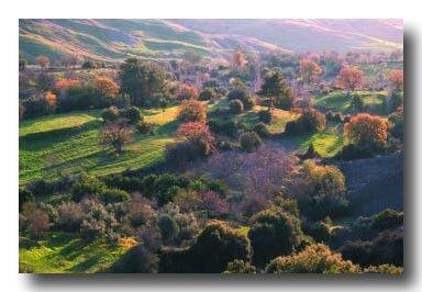 chypre_paysage