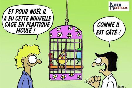 Cage plastique