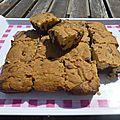 Brookie (brownie/cookie)
