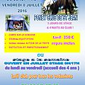 Stage equitation montpellier : ouvert tout juillet 2016!!!!