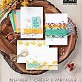 Nouveau catalogue annuel et offres de lancement !!!!