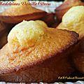 Les madeleines vanille citron (et au lait ribot!)