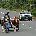 Chiloé Charrette à boeufs et voiture