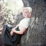1953-09-02-LA-Laurel_Canyon-Tree_Sitting-010-1