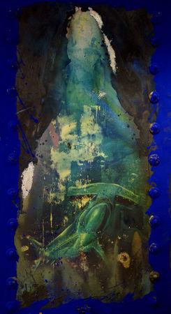 requin_bleu_vertical_maroc_