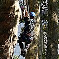 IMG_0721a
