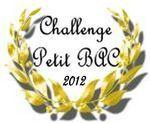 challenge_petit_bac_Enna_2012