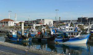 130829-Port Pêche Le Havre-4-2