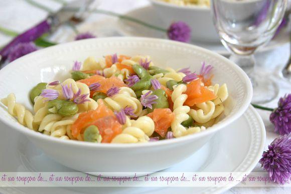 Salade de fèves et torti fleurs de ciboulettes