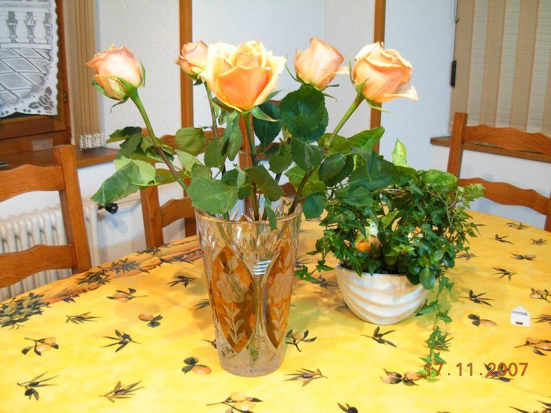 fleurs 17nov 07 004
