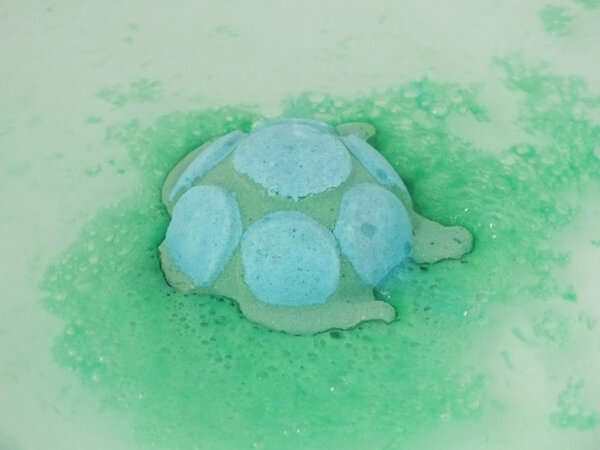 3 Turtle-lush-ma-bulle-cosmeto-mabullecosmeto