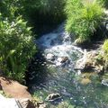 Taupo - Stream Water 7