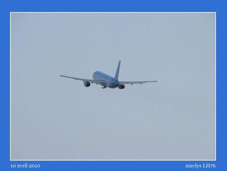 L_oiseau_bleu_3