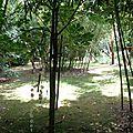Jardin Poterie Hillen 12061647