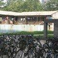 Vélos à Beida